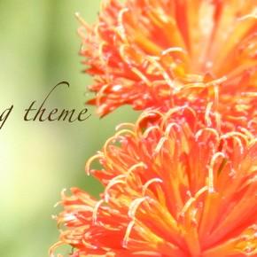 Fresh and exciting summer wedding theme- orange