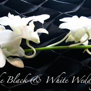 Ideas for the Black & White Wedding Theme